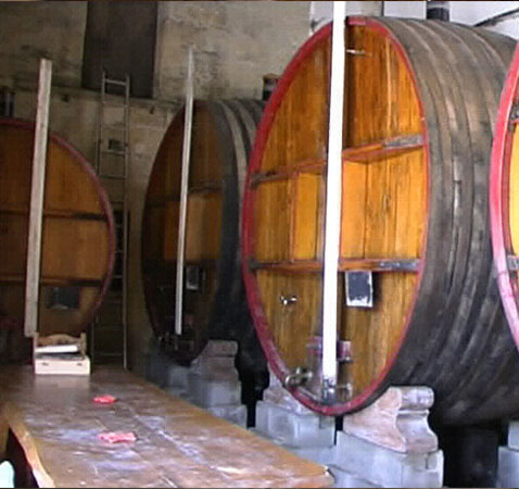 conservation du vin traditionel en foudre